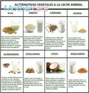 Los 7 Mejores leche vegetal bebé 6 meses para tu bebé