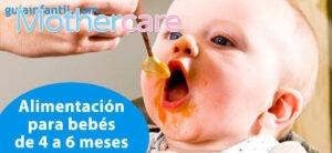 Los 7 Mejores papilla bebé autoinmunidad para tu niño